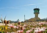 Brac Airport