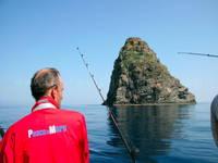 Big Game Fishing Insel Vis
