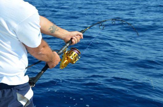 Big Game Fishing Split
