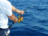 Split Adria - Big Game Fishing