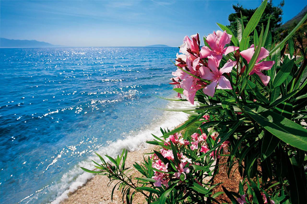 051e1075207ad Die schönsten Kroatien Bilder