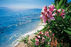 Flora und Fauna in Kroatien