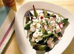 Salat aus Kroatien
