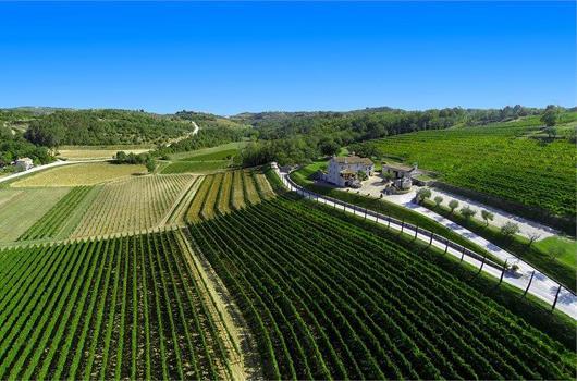 Weingut Kabola - Momjan, Istrien, Kroatien