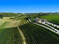 Weingut Kabola, Momjan, Istrien, Kroatien