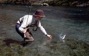 Fliegenfischer in Kroatien