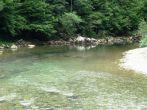 Fliegenfischen am Fluss Kupa