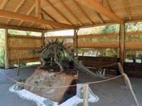 Das Dino Museum