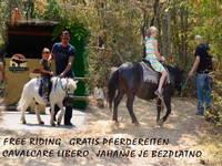 Streichelzoo im Dinopark Funtana