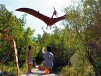 Der Wanderweg durch den Dinopark