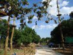 Adrenalinpark Glavani - Hochseil