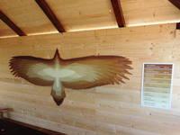 Raubvogelausstellung im alten Forsthaus von Grifon.hr