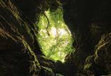 Höhle Samograd, Perusic