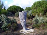 Kap Kamenjak - Pfad der Dinosaurier
