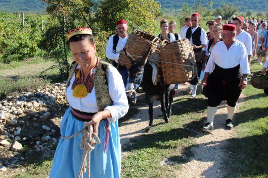 Agrotourismus Konavle - Dalmatien