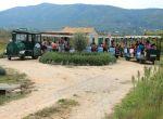 Agrotourismus Konavle - Weinbahn