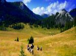 Linden Tree Retreat & Ranch - Reiten im Velebit Gebirge