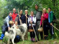 Linden Tree Retreat & Ranch - Wandern