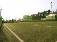 Green Garden Fußballplatz