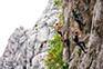 Klettern in Gruppen