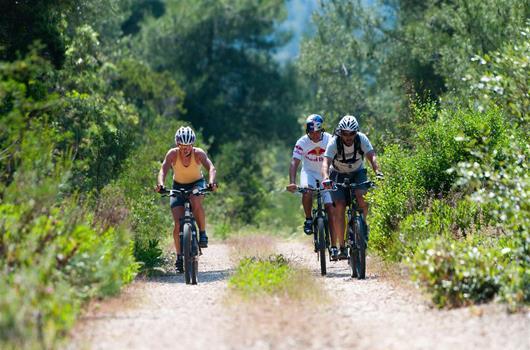Radtouren Insel Korcula