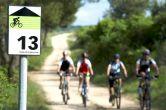 Radfahren Umag-Novigrad - Markierte Radwege