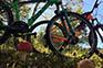 Ausflug Leihfahrräder, Bike Point Crikvenica