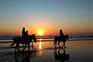 Pferdeausflug Sonnenuntergang
