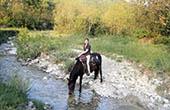 Rast am Bachlauf, Istrien