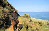 Mediterrane Natur, Reiten Istrien