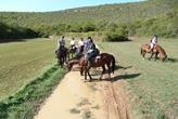 Reitergruppe in Kroatien