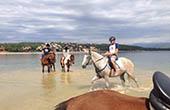 Reitergruppe, Meer, Insel Krk