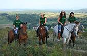Team, Ranch Equus igni