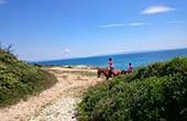 Reitausflug Küste & Meer, Istrien