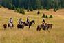 Reitergruppe Linden Retreat