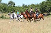 Reitergruppe, Wiese