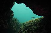 Unterwasserhöhle, Tauchen Istrien