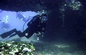 Tauchgang Unterwasserhöhle, Istrien