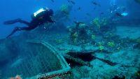 Najada Diving - Wracktauchen