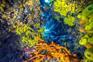 Tauchen Insel Rab - Farbenfroh