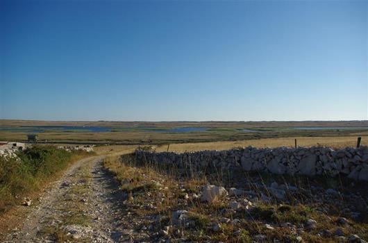 Wandern Insel Pag - Vogelreservat Velo Blato