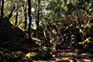 Wanderweg Insel Korcula