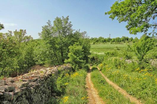 Wanderweg Staza Suhozida - Tinjan, Kringa
