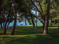 Wandern Porec - Zelena Laguna