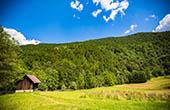 Wiese - Nationalpark Risnjak