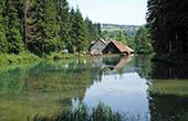 See Corgljevo, Moravice