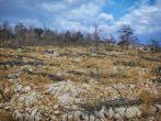 Karge Landschaft Goli Otok