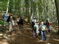 Naturpark Ucka - Wanderroute Poklon Vojak Plas