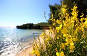 Strand Sovinje - Natur