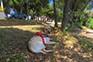 Natürlicher Schattten am Hundestrand Sakucani